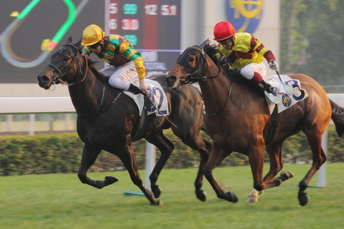 ticket to ride asia horse betting