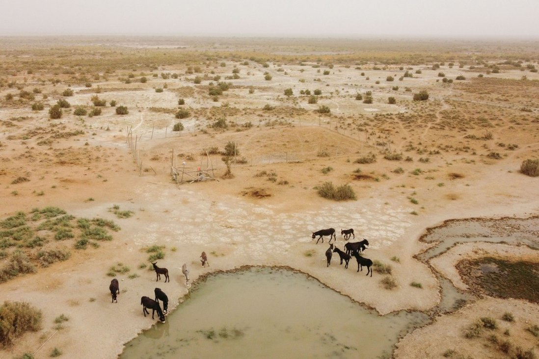 Реакторы могут быть построены в отдаленных пустынных районах, где мало воды. Фото: Reuters
